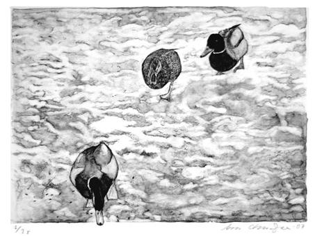 (V)and(rare), 50 x 40 cm, litografi