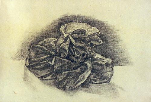 Kol, sketch