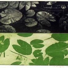 Näckrosor, akvatintetsning i färg, 1986